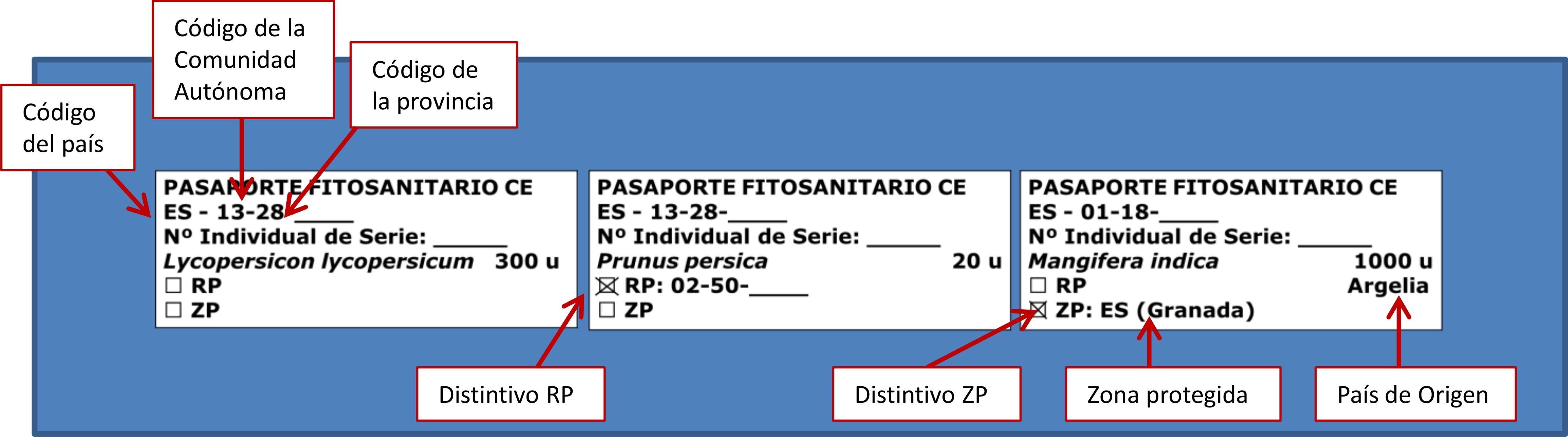 descripcion-datos-pasaporte-fitosanitario